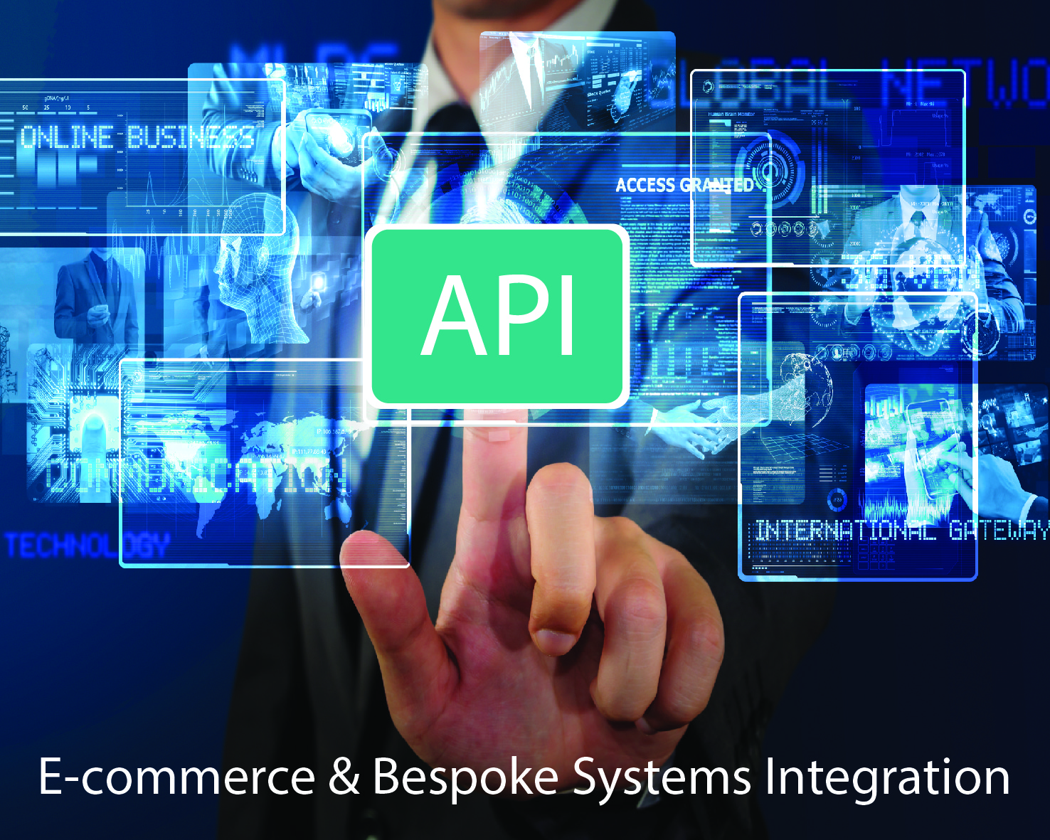 API / Systems Integration & Support