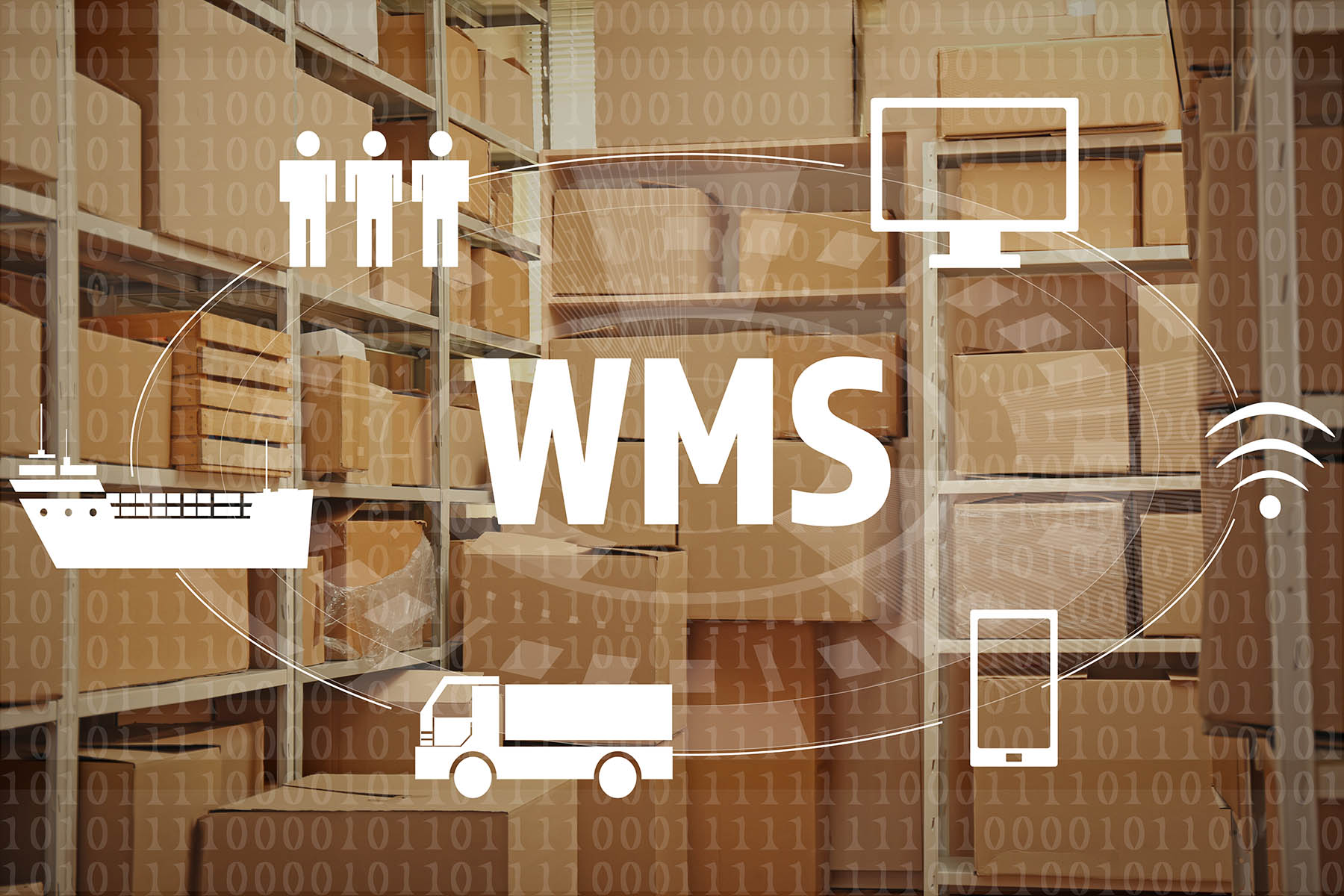 Warehouse WMS & Client Web portal access